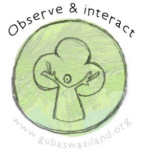 1observe&interact